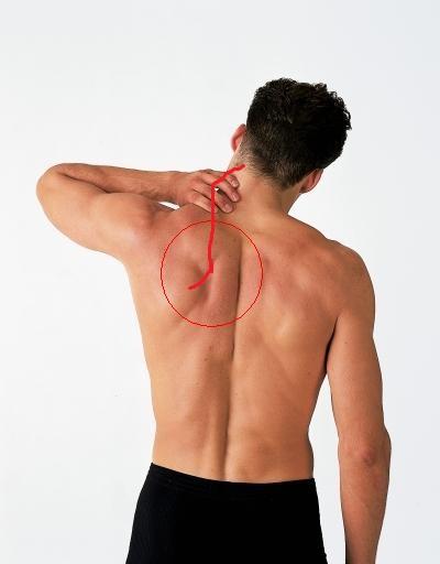 Schulterblatt schmerzen linke Stechen im
